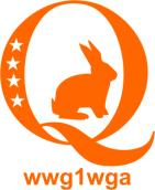 Qanon Sticker Orange